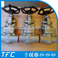 China hastelloy plug disc forged steel globe valve wholesale