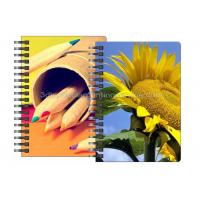Quality Stationery Diary A4 Size Notebooks 3D Lenticular Cover Of Famous Views for sale