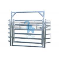 China Metal Pipe Corral Fencing Feedlot Corral Fence Panels For Horse / Goat wholesale
