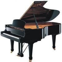 Quality Black Polished 185cm 88 KEY Senior Acoustic Grand Piano With Straight Leg AG-GP185B for sale
