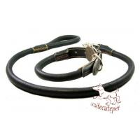 China leather dog leash for all sizes dogs wholesale