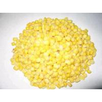 China Frozen Sweet Corn,Frozen Vegetables wholesale