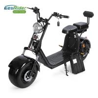 China Two Wheel China Disc Brake Electric Bike for Adults Factory Citycoco with Front and Rear Suspension Shock wholesale