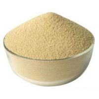 High Activity Feed Enzymes In Poultry Nutrition Cream White Powder Fat Utilization Improvation