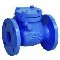 China cast iron foot valve wholesale