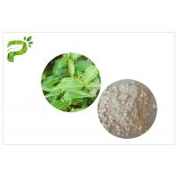 China CAS 989 51 5 Egcg Green Tea Leaf Extract , Green Tea Supplements For Weight Loss wholesale