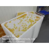 China ISO9001 PPE 75 * 55 * 5cm Plastic Drying Trays wholesale