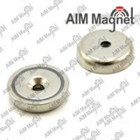 China Fine the more details NdFeB magnet magnetic assembly wholesale