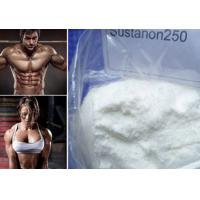 China Raw Powder Sustanon 250 Bodybuilding Testosterone Blend for Strong Bones and Muscle Mass wholesale