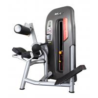High End Back Exercise Machine , Men'S Body Power Lift Gym Equipment
