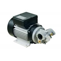 China Portable Die - cast Aluminum Electric Diesel Transfer Pump 550W AC Gear Type  IP55 wholesale