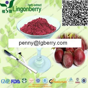 China Red Beet Juice Powder wholesale
