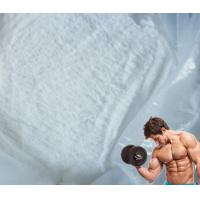 China CAS 1424-00-6 Body Building Steroids for Muscle Gain , Mesterolone Androgen Proviron wholesale