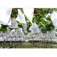 Buy cheap Durable Non Woven Garden Weed Control Fabric for Plant Protection / Agriculture from wholesalers