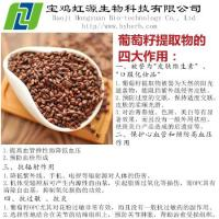China Grape Seed Extract Vitis Vinifera wholesale