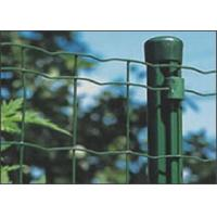 China Assembled Electric Galvanized Welded Holland Wire Mesh Euro Panel Fencing wholesale