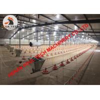 China Bolivia Poultry Farm Broiler Deep Litter System with Feeding Pan Line & Chicken Floor Raising System in Poultry House wholesale