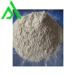 China bentonite fuller earth powder for food oil bleaching wholesale