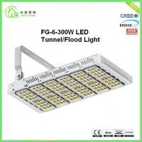 China Resounding Outdoor Led Light Tunnel Luminaire 300w For Baseball Field wholesale