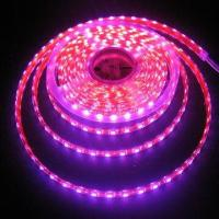 China Silicone Case Series Flexible LED Strip with 50,000-hour Long Lifespan and Waterproof Feature wholesale