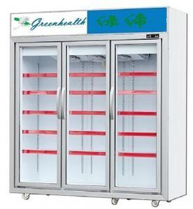 China Upright Glass Door Freezer Frozen Display For Ice Cream Frozen Meat wholesale