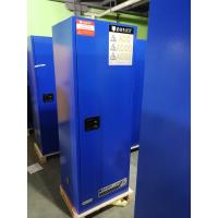 China Industrial Corrosive Chemical Storage Cabinets With Adjustable Shelf Double Door wholesale