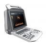 China Handheld Animal Ultrasound Machine , Laptop Veterinary Ultrasound Scanner wholesale