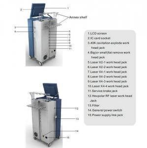 China Cavitation RF Laser Lipo Machine / Weight Loss Skin Tightening Machine 650nm LS650 wholesale