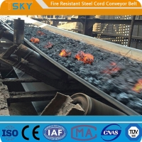 China ST/S630 Fire Resistant Steel Cord Conveyor Belt Fire Retardant Conveyor Belt wholesale