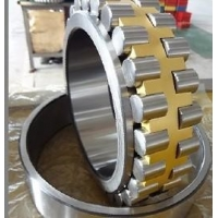 China CNC Turning machine center use NN3022KW33 roller bearing 110x170x45mm brass cage wholesale