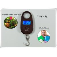 China 25kg / 5g Home Electronic Scale Sound Indication With Lock Function And Cell Button wholesale