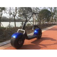 China ISO9001 Attractive Price 2 Wheel Citycoco Electric Scooter with EEC Certificate wholesale