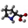 China White crystals AJI92 Food Grade Amino Acids L-Proline Molecular Weight: 115.1300 wholesale