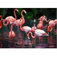 China PET 50*70cm 3D Lenticular Pictures , Custom 3d Lenticular Photo With Frame wholesale
