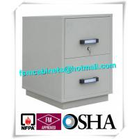 China Fire Resistant Filing Cabinets , 2 Drawer Fireproof File Cabinets For Documents wholesale