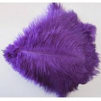 China ostrich feather,any color is available,dyed ostrich feather,hair accessories feather fashion accesso on sale