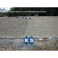 China Hot Dipped Galvanized Hexagonal Wire Mesh Gabion Boxes Stone Cage Retaining Wall wholesale