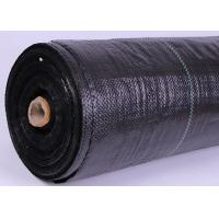 China Plastic Polyethylene Weed Control Fabric With Strip Eliminates Weed Growth on sale