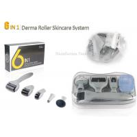 China Grey Stainless Steel Needle Microneedle Skin Dermal Roller System 6 in 1 Roller wholesale