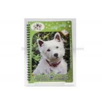 China 3D PET/PP/PVC Notebooks 3d Lenticular Cover A6 Jotter For Gift / Premium wholesale