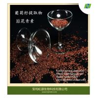China 100% natural high quality grape seed extract wholesale