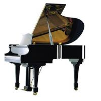 Quality 170cm Black polished Wooden Acoustic Grand Piano with Suzuki / Roslau String for sale