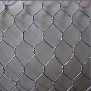 "China Gabion Mesh Pvc Coated Hexagonal Wire Netting 1/2"" 2"" 2.0-4.0mm Gauge Iron Wire wholesale"
