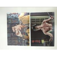China Multicolor Printed 3D Lenticular Postcards , Personalised 3d animated pictures Offset UV Prining wholesale
