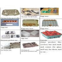 China Recycled Paper Egg Tray Molding Machine , Egg Tray Forming Machine wholesale