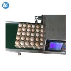 China Automatic Egg Inkjet Date Code Printer , Inkjet Marking Equipment on sale
