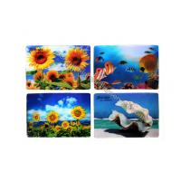 Quality Cartoon PP PET PVC Image 3D Lentiuclar Magnets UV Printing Souvenir for sale