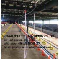 China Poultry Farming Silver Steel Automatic Broiler Chicken Deep Litter System wholesale