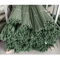 Buy cheap Durable Plant Garden Support Green PE Coated Garden Stake from wholesalers