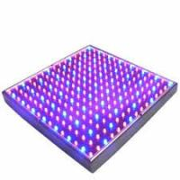 China Full Spectrum SMD Indoor LED Grow Lights 50 Watt For Breeding / Farmland , 315x310mm wholesale